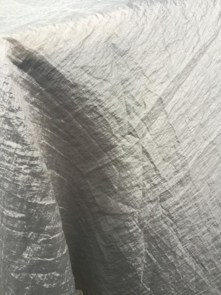 silver tablecloth 2